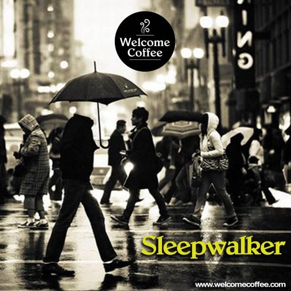 Anche il singolo Sleepwalker recensito su Gruppi Emergenti